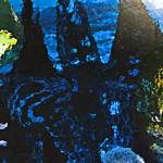 myimage200105.jpg